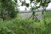 Photograph of close up at back of Holly Lodge