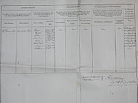 Link to RG Wallace discharge Papers